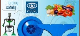 GreenBlow diventa anche Blu Visual !