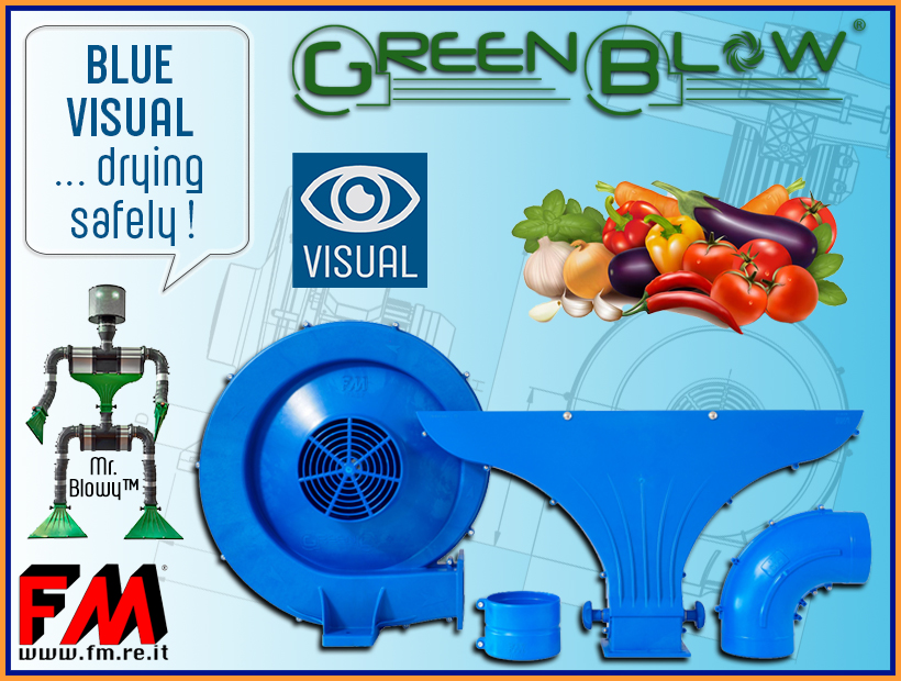 GreenBlow also becomes Blue Visual !